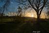 Bad Birnbach, Sonnenuntergang im Kurgarten (Peter Goll thx for +5.000.000 views) Tags: 2017 badbirnbach urlaub erlangen germany sunset sonnenuntergang kurpark baum tree natur nature sky bayern deutschland bavaria