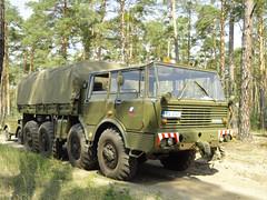 Tatra 813 (Vehicle Tim) Tags: lkw truck fahrzeug armee army military militär tatra pritschenlkw flatbedtruck