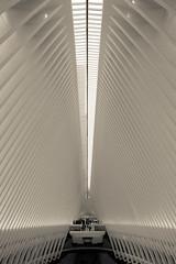 oculus ~ santiago calatrava (erich remash) Tags: oculus ground zero calatrava architecture black white new york city