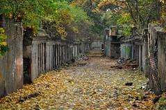 different world (rafasmm) Tags: łódź lodz poland polska europe abramowskiego cell outdoor city citycenter autumn streets street nikon 18105