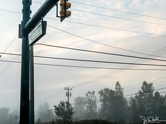 257/365 - Fog