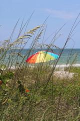 Beach Umbrella (groecar) Tags: beach beaches beachumbrella beachumbrellas floridabeach gulfofmexico
