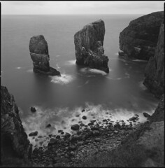 Elegug (steve-jack) Tags: hasselblad 501cm 50mm distagon ilford delta 100 film 120 6x6 wales pembrokeshire stacks perceptol long exposure epson v500 coast rocks elegug