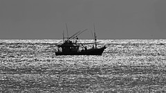 Alone in the Sea (Chandana Witharanage) Tags: srilanka southasia indianocean asia arugambay arugamkudah southeast wave ocean sea water summer move coast glassy slow boat people alone 7dwf thursdayblackwhite canoneos7d chandanawitharanagephotography canonef100400mmf4556lisusm