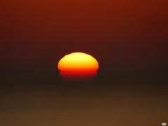 Sólo el sol