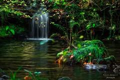 Fantasía (raulmiguelmantilla) Tags: otoño cascada waterfalls autumn