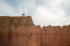 Bryce Canyon (jkr1812) Tags: 2017 april brycecanyon queensgardentrail rock sky tree us usa utah bryce unitedstates