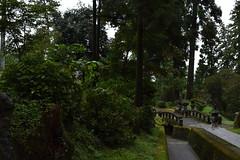 Myougi05 (SeiSATOTSU) Tags: 群馬 神社 妙義神社