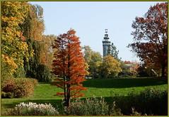 Der Herbst treibt es bunt ... (Kindergartenkinder) Tags: grugapark gruga essen kindergartenkinder