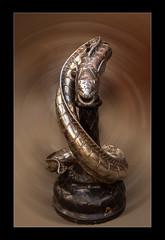 Hiss (mini-b) Tags: hastings georgestreet sculptures snake hiss metal photoshop upclose canon eos5dmkii ef24105mm14lisusm 2017