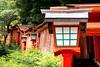 Taikodani Lantern (campra) Tags: japan shimane tsuwano 島根 津和野 sanin 山陰 shrine taikodani shinto inari torii