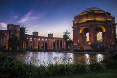 Vivid Life. (Axim2013) Tags: sanfrancisco california unitedstates us nikon nikond800 color photo myphotoproject raykwa palaceoffinearts