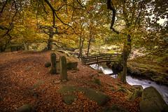 Padley Gorge Colours (unciepaul) Tags: padley gorge autumn beautiful colours water bridge trees leaves rocks peak district england love this place