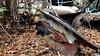 20171021_151645 v2 (collations) Tags: ontario mcleansautowreckers autowreckers wreckers automobiles autos abandoned rockwood derelict junkyards autograveyards carcemeteries