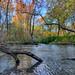 Autumn along the Tomahawk Creek