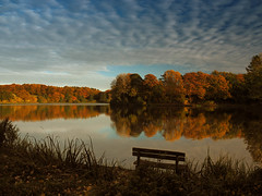Please take a seat and enjoy the golden evening light (Ostseeleuchte) Tags: bank bench eveninglight autumncolors beautifulsky abendlicht herbstfarben goldenerherbst wolkenhimmel sky clouds autumnlight germany