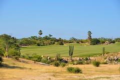Cabo 2017 244 (bigeagl29) Tags: cabo del sol golf course club ocean san lucas jose mexico beach scenic scenery landscape cabo2017