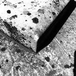 Shadowliciousness thumbnail