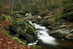 Ilsetal (Petra Runge) Tags: wasserfall bach wald wasser landschaft natur felsen harz ilsetal deutschland forest creek landscape nature water