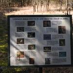 Birds found in Cedar Glades thumbnail