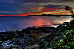 Rocky Shore at Sunrise (Tom Mortenson) Tags: longexposure sunrise morning colorful maine barharbor barharbormaine usa northamerica america newengland canon hdr tonemapping photomatix 1740l canoneos canon6d shore rocky dawn geotagged