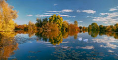 sailing through fall (cherryspicks (on/off)) Tags: landscape autumn fall reflections swans water sky clouds lake polarizingfilter trees zagreb croatia