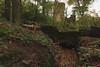 Knypersley Tower (Andy Cash) Tags: 2017 andycash autumn knypersleypool nature unitedkindom waterfall