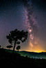Reaching the end of the Milky Way season for this year. (Vagelis Pikoulas) Tags: milky way galaxy stars star universe space night sky nightscape tree trees long exposure canon 6d tokina landscape porto germeno greece october autumn 2017