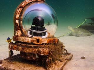 Navarre Reef Webcam Superstar