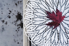 Patterns (Carrie McGann) Tags: leaf mapleleaf doily lace crochet bench cement splats 110117 nikon interesting
