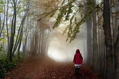 Capuccetto rosso (Zz manipulation) Tags: art ambrosioni zzmanipulation bosco natura sentiero people donna foglie alberi