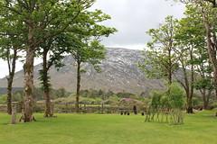 IMG_3225 (avsfan1321) Tags: kylemoreabbey ireland countygalway connemara green garden