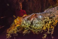 Jewel Cave Flowstone (www78) Tags: custer jewelcave nationalmonument jewel cave national monument south dakota