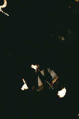 - Juggler - (Philip Kisia) Tags: fire firedancer dance juggle juggler pelz pelzphotography san fransisco californa portrait people flames entertainer