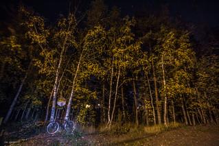 autumn night biking