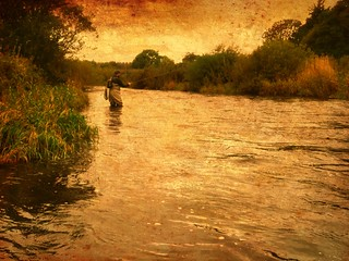 The Annan Angler