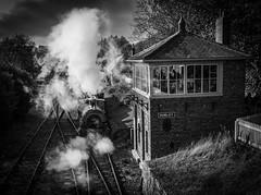Rowley Steam (MMiPhoto) Tags: mono black white steam beamish engine museum train railway heritage