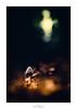 Le décollage d'Ariane (Naska Photographie) Tags: naska photographie photo photographe paysage proxy proxyphoto macro macrophotographie macrophoto minimaliste minimalisme mushroom ambiance univers ariane fusée landscape color couleur bokeh flare flou artistique art artist imaginaire imaginarium espace