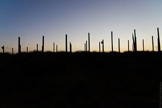 ...minimal sunset...
