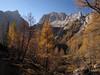 Tosc, Bohinjska vratca, Vernar (Damijan P.) Tags: hribi gore hiking mountains slovenija slovenia alpe julijskealpe alps julianalps krma velikipršivec jesen autumn prosenak