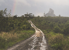 Vanishing Point (Tibro & Co) Tags: vanishingpoint beerburrumstateforest road mud sunshinecoast conowrin mtconowrin queensland australia rain rainbow