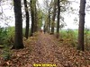 """2017-10-25            Raalte 2e dag       32 km  (81) • <a style=""""font-size:0.8em;"""" href=""""http://www.flickr.com/photos/118469228@N03/37315437334/"""" target=""""_blank"""">View on Flickr</a>"""