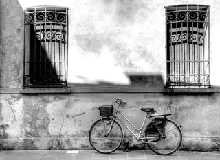Bicicleta / Bicycle