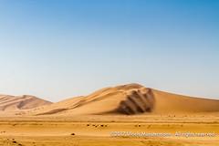 The Walvis Bay dunes, Namibia (Ulrich Münstermann) Tags: africa afrika damaraland dünen erongoregion landschaft namibia strase transportation walfischbucht walvisbay walvisbaai wüste desert dry dunes landscape landschap road sand straat street transport