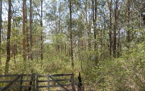 Lot 4 Leslie Creek Road, Drake NSW 2469