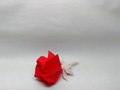 Rose by Abraham (Zephyr Liu) Tags: origami kami paper rose flower abraham