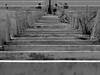 Stairs (gergelytakacs) Tags: greece αθήνα athína stadium stairs olympics steep panathenaicstadium παναθηναϊκόστάδιο weed weeds sports lowangle railathens ελλάδαstreetphotography streetphotography urbanphotography streetphoto urbanphoto unposed streetscape urban city photo streetphotographer streetphotos fotografíacalle fotografíacallejera calle photosderue photographiederue fotografiauliczna pouličnáfotografia fotografiadistrada pouličnífotografie utcafotó strasenfotografie уличнаяфотография צילוםרחוב stranger documentary people streets documenting publicspace candid blackandwhite bwmonochrome blackwhite blancoynegro blanco negro noiretblanccompact digital fuji fujifilm x20 xseries x series 20 fujifilmxseries fujifilmx20 fujix20