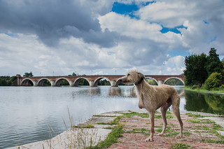 Stanley at Moissac