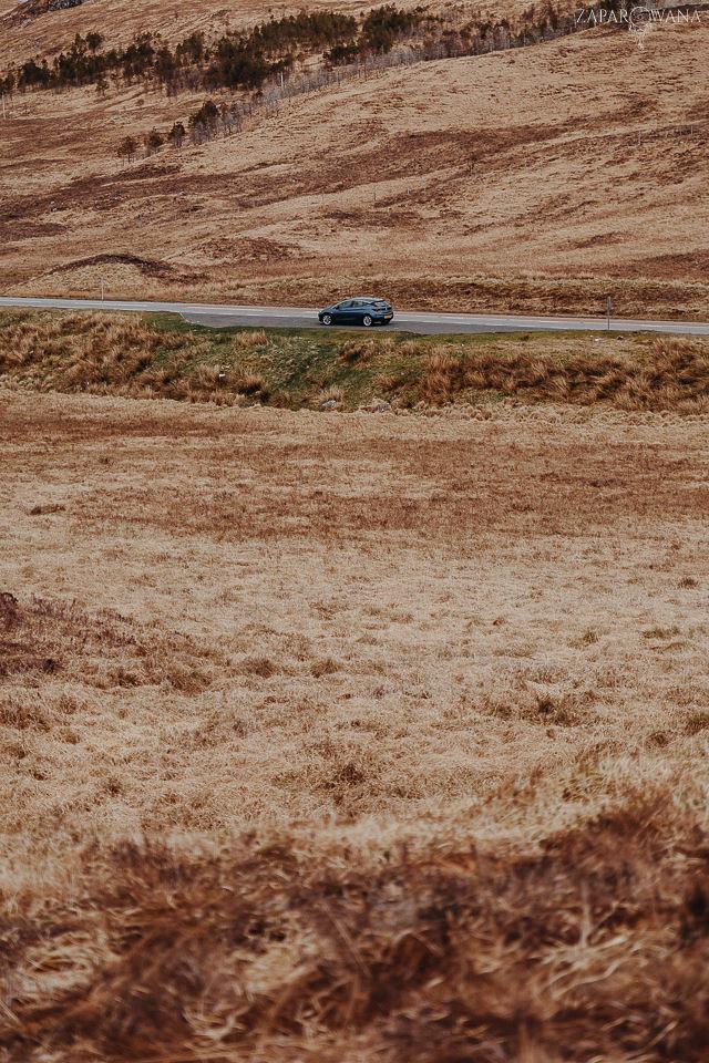 042 - Szkocja - Loch Lomond i okolice - ZAPAROWANA_