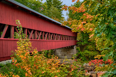Vibrant (aMemoryCaptured) Tags: other autumn usa flikr bridge northamerica canada lounge tree places newengland conway newhampshire unitedstates us